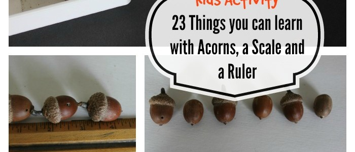 Kids Activity: Acorns Weights and Measures (23 things you can learn with Acorns, a scale and a ruler)