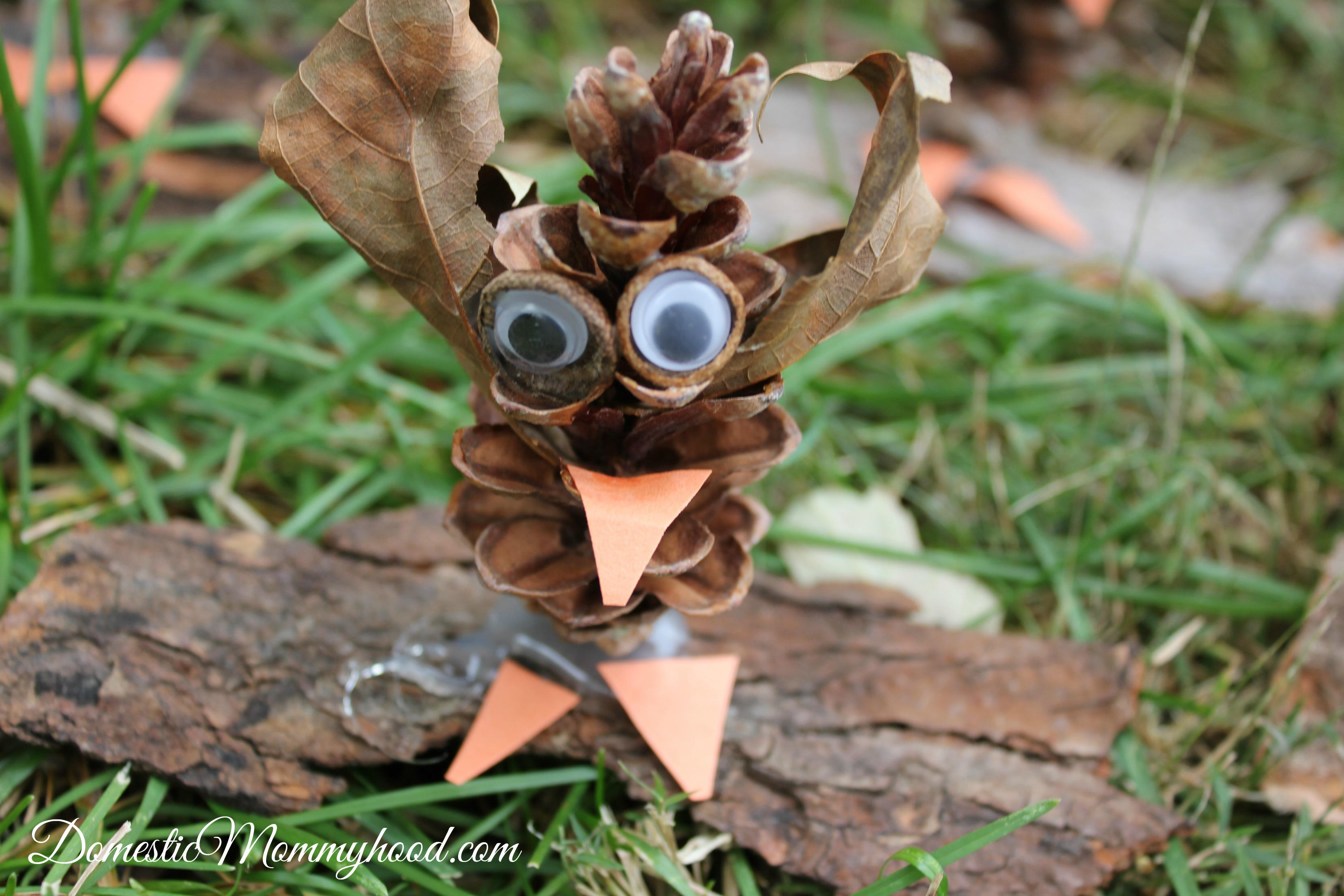 nature-craft-for-kids-pinecone-owl-kids-craft-
