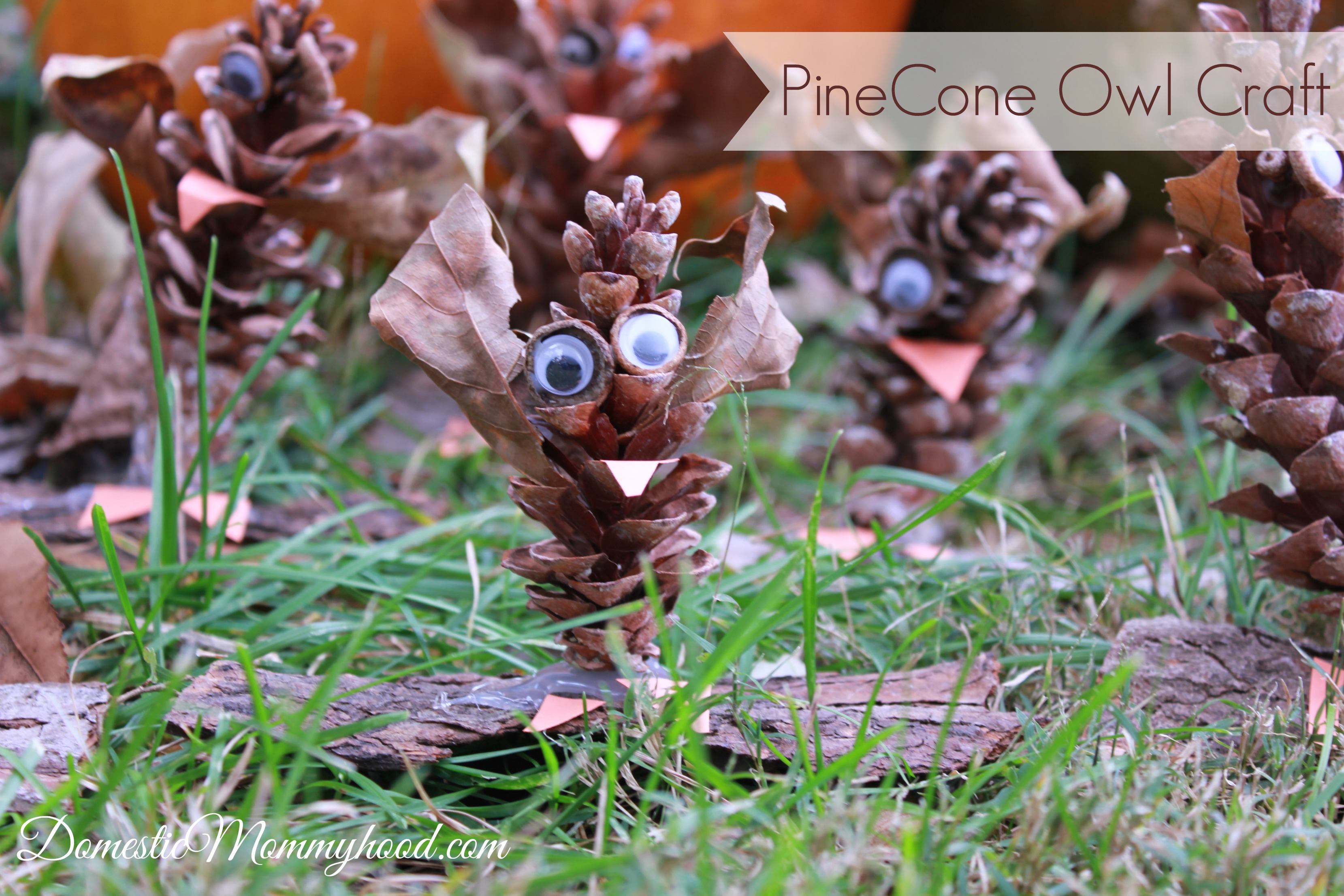 nature-craft-for-kids-pinecone-owl-kids-craft-3