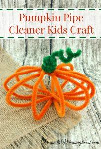 Pumpkin Pipe Cleaner Kids Craft
