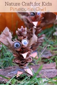 Nature Craft for Kids: Pinecone Owl Kids Craft