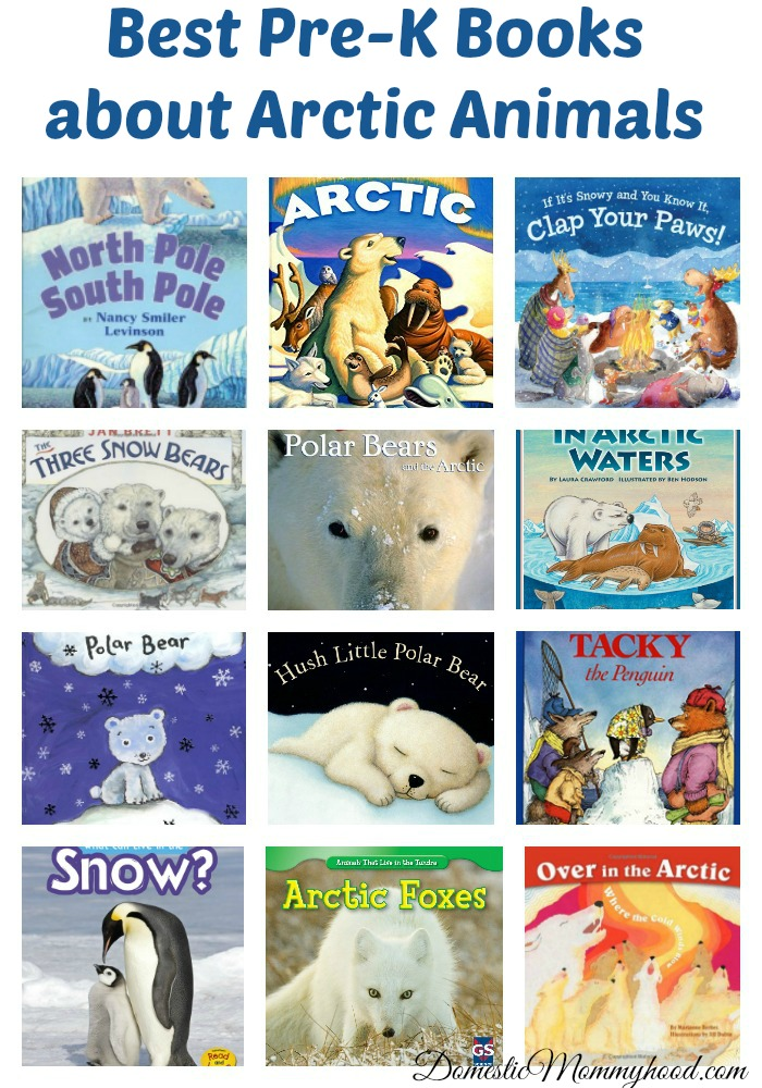Best Pre-K Books about Arctic Animals